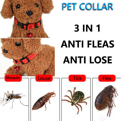 Insect Killer Pet Supplies Anti Flea Collar Safety Effective Cat Dog Collars