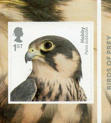 GB QE II 2019 S/A Birds of Prey booklet stamp Hobby MNH