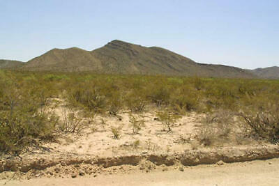 NO RESERVE: Warranty Deed 5 Acres in Southwest TX w/Roads, Phone, Power in Area