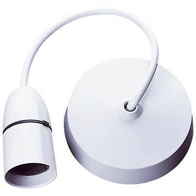 T1 Pendant Lamp Holder with Ceiling Rose 60W