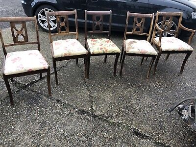 5 regency dining chairs
