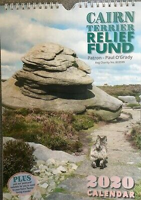 Cairn Terrier Dog Rescue Charity CAIRN TERRIER RELIEF FUND Wall Calendar 2020