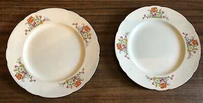 Alfred Meakin England Dinner Plates X 2 Vg Condition No Cracks, Chips Crazing