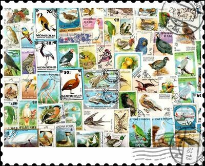 Birds : 200 Different Stamps Collection