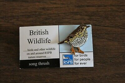 RSPB Badge Song thrush on British Wildlife Card
