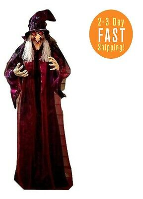 HALLOWEEN Life Size Psychic WITCH Haunted House Decoration Prop Crystal Ball