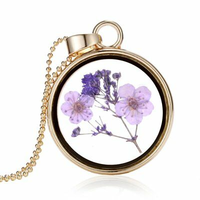Charm Natural Purple Dried Flower Pendant Necklace Sweater Chain Women Jewelry