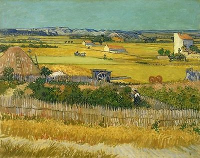 ZWPT144 modern 100% handpainted countryside landscape art oil painting on Canvas