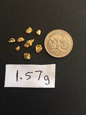 Gold Nuggets, Small Picker, From Central West, NSW, Australia. 1.57 Grams.