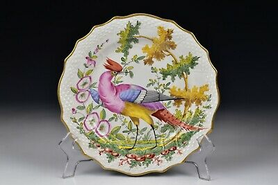 Chelsea Hand Painted  Porcelain Bird Plate 19th Century #2