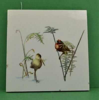 Antique Minton Aesthetic design wall tile 6 x 6 Beautiful bird / plant Details 1