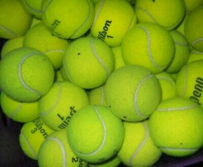 50 Used Tennis Balls-GRADE AA- FAST FREE SAME DAY SHIPPING