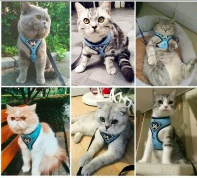 Cat Harness Coat with Free Leash Lead Small  Or Medium Size Pink or Blue