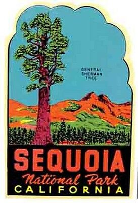 Sequoia National Park  California   Vintage Style  Travel Decal sticker