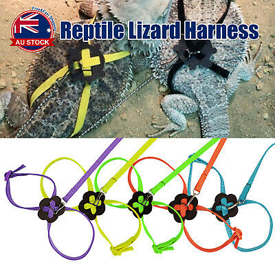 Adjustable Reptile Lizard Harness Training Rope Leash Multicolor Light Outdoor