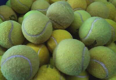 15 Used Tennis Balls For Dogs - Machine Washed At 60 Degrees To Remove Chemicals