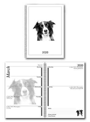 Alaskan Malamute Appointment Diary 2019 A5 Week Per View by Curiosity Crafts