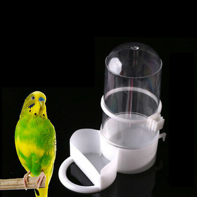 bird pet drinkers feeders automatic food waterer clip aviary cage parrot bud PE