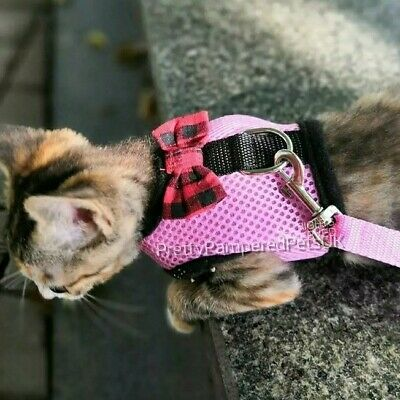 XXXS Tiny Kitten Kitty Cat Coat Harness and Leash Lead Starter Set in Pink Only