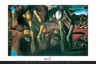 269235 Metamorphosis Salvador Dali Narcissus Focal Piece Greek POSTER AU