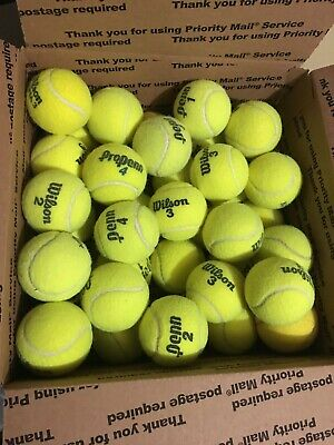 32 Used Tennis Balls Wilson and Penn  Free Shipping!