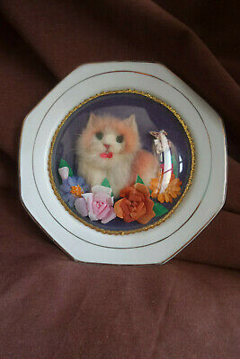 assiette chinoise vintage chats sous verre cat kitten plate china made
