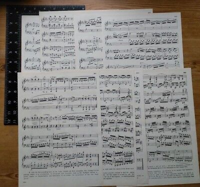Music paper / manuscript papers, pack of 8 large vintage sheets