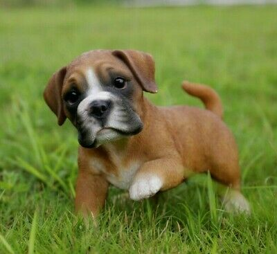 Boxer Puppy Dog Playing Adorable - Life Like Figurine Statue Home / Garden NEW
