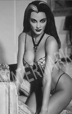 Sexy Lily Munster Portrait High Quality Metal Magnet 2.5 x 4 Fridge 9006