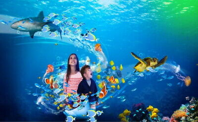 2 X Tickets to Sea Life - Booking Form + Token 1 PICK YOUR OWN DATES