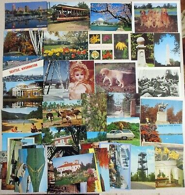 Lot 50 Various Unused Postcards for Collecting, Mailing, Dogs Scenery, Buildings