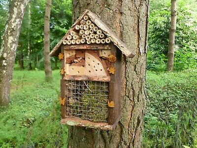 Wooden Eco friendly  Insect/Bee/Bug Hotel, Handmade by Homes  for woodland folk
