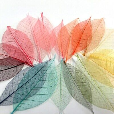 BULK Skeleton Leaves For Cards Invitations Wedding Scrapbooking Card Making DIY