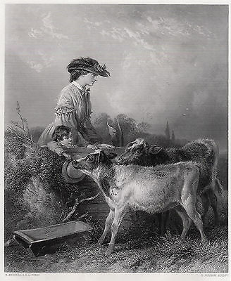 "LOOK 1800s Richard ANSDELL Antique Engraving ""In the Pasture"" SIGNED Framed COA"