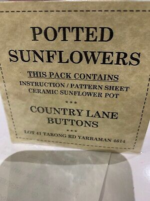 Potted Sunflowers And Instructions