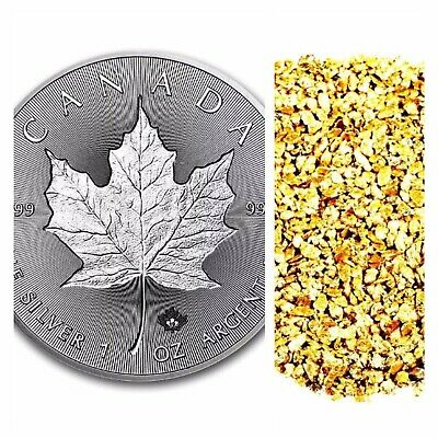1 Troy Ounce .9999 Silver 2019 Maple Leaf Bu +10 Piece Alaskan Pure Gold Nuggets