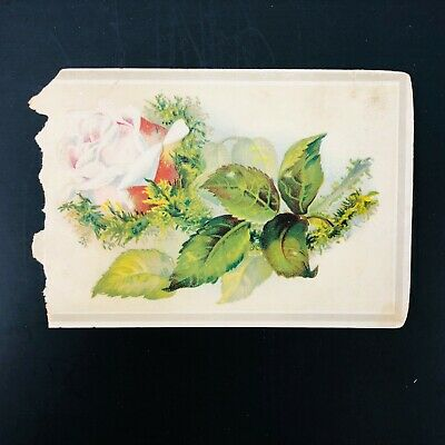 Victorian Trade Card Scrapbook Advertising Rose Magic Yeast Cakes Chicago Craft