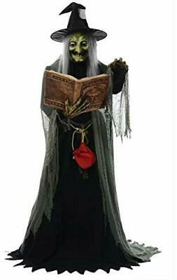 Spell Speaking Witch Animated Prop Halloween Haunted House MR124250 by Mario Chi