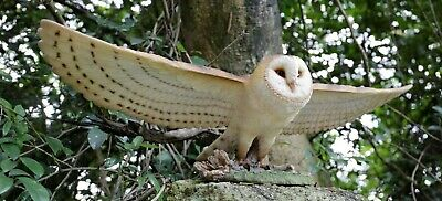 NEW Large Flying Barn Owl Figurine Realistic - Life Like Statue Home / Garden