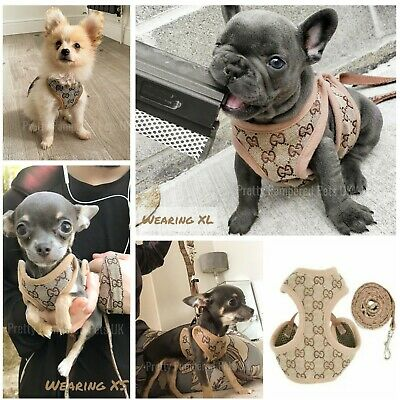 Designer Harness Coat +LEASH Chihuahua Puppy Dog XXXS XXS XS Small Breeds