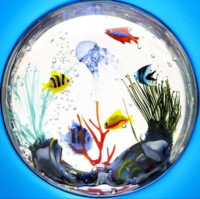 MURANO Elio RAFFAELI Roberto COMMOZO Fish AQUARIUM Art Glass SCULPTURE 16.5""