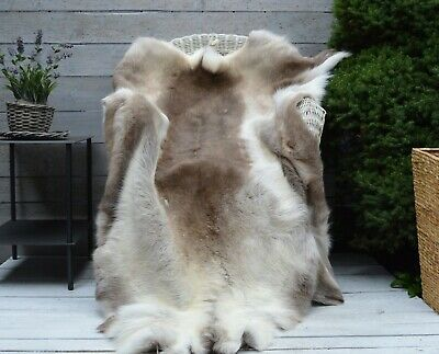 XXXXL Rare REINDEER  Skin / Hide / Rug Quality Grade Professionally Tanned