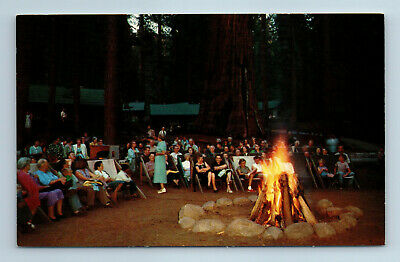 Evening Campfire Giant Trees Sequoia National Park California Vintage Postcard