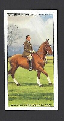 Lambert & Butler - Horsemanship - #13 Breaking From Walk To Trot
