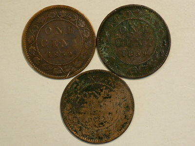 🍁 1859 Canada Large Cents  Lot of 3 Includes DP#2 Variety #8464