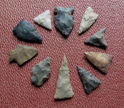10 Arrowheads / Bird Points From Lancaster County Pa - Native American Indian