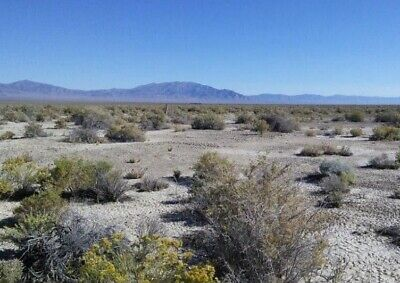 40 AC IN NEVADA W/ROADS, PHONE: SURROUNDED BY 100s OF ACRES OF BLM LAND