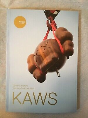 KAWS YPS -  Behind-The-Scenes Guide