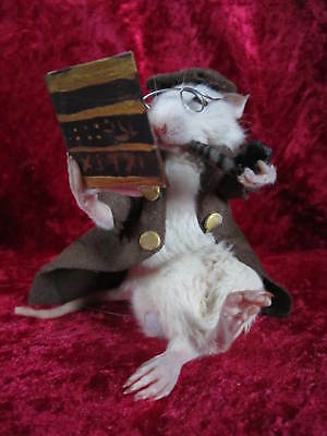 taxidermie rat Sherlock Holmes taxidermy rat  cabinet de curiosité oddities