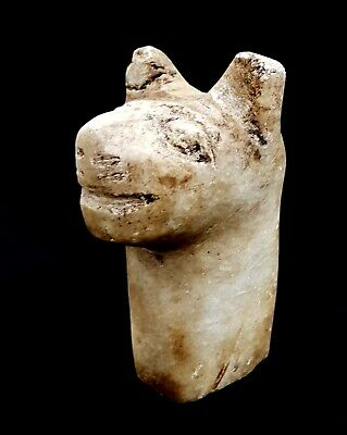 Rare Ancient Greek Terracotta Pretty Bust horse Marble Ptolemaic egyptian Grecia